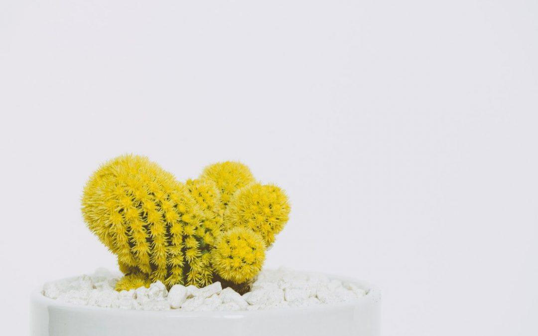 Amarillo en cromoterapia: Espiritualidad